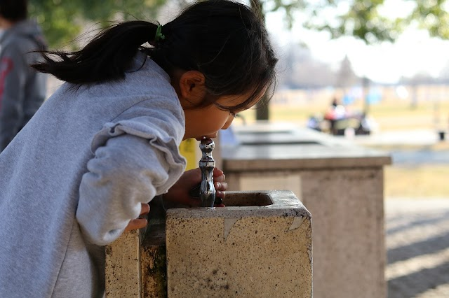 Recent Survey Shows Many Florida Schools Not Testing the Safety of Drinking Water