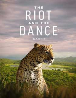 The Riot and the Dance (2020)