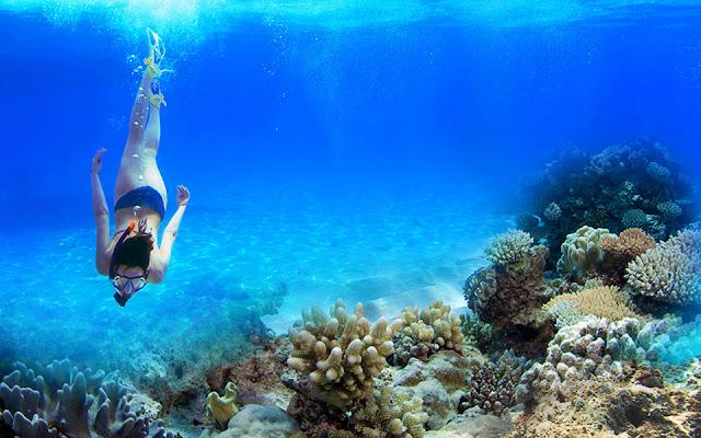 Klik untuk Melihat Snorkeling di Pantai Pahawang
