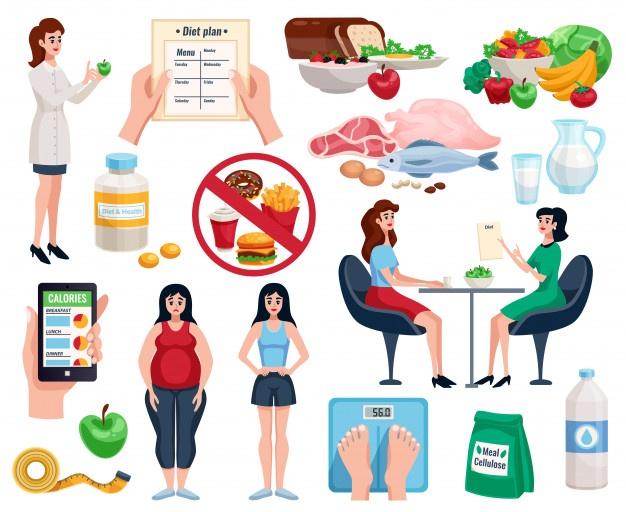 diet plan to reduce obesity
