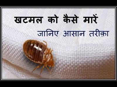 Bed Bugs kills spray hindi