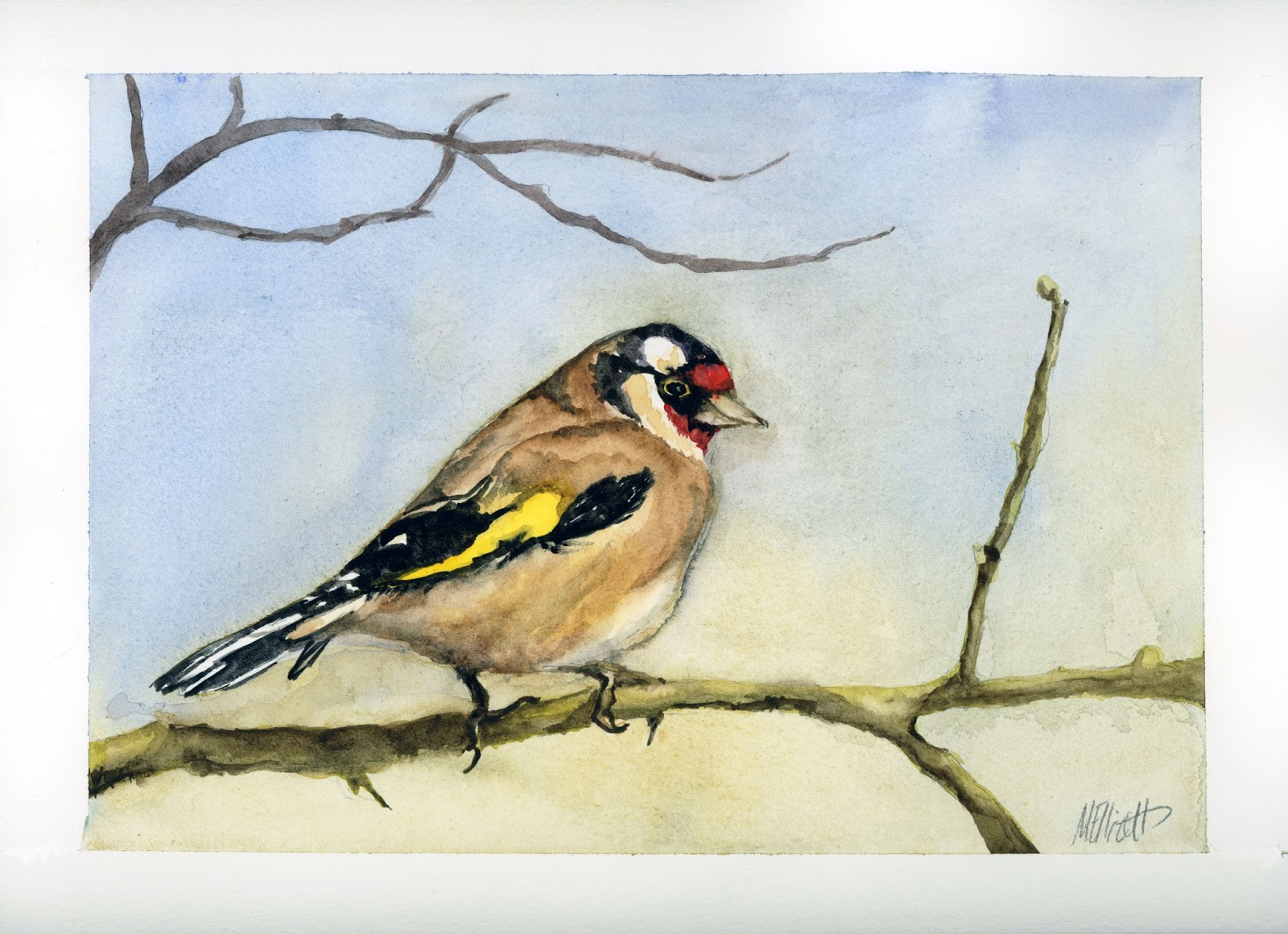 Burbank library blog may 2017 carduelis carduelis goldfinch fandeluxe Image collections