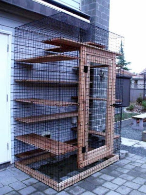 Outdoor Cat Enclosure For Sale