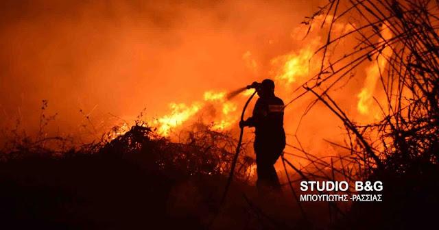 Μεγάλη φωτιά σε δάσος στην Ηλεία από την νύχτα του Μ. Σαββάτου (βίντεο)