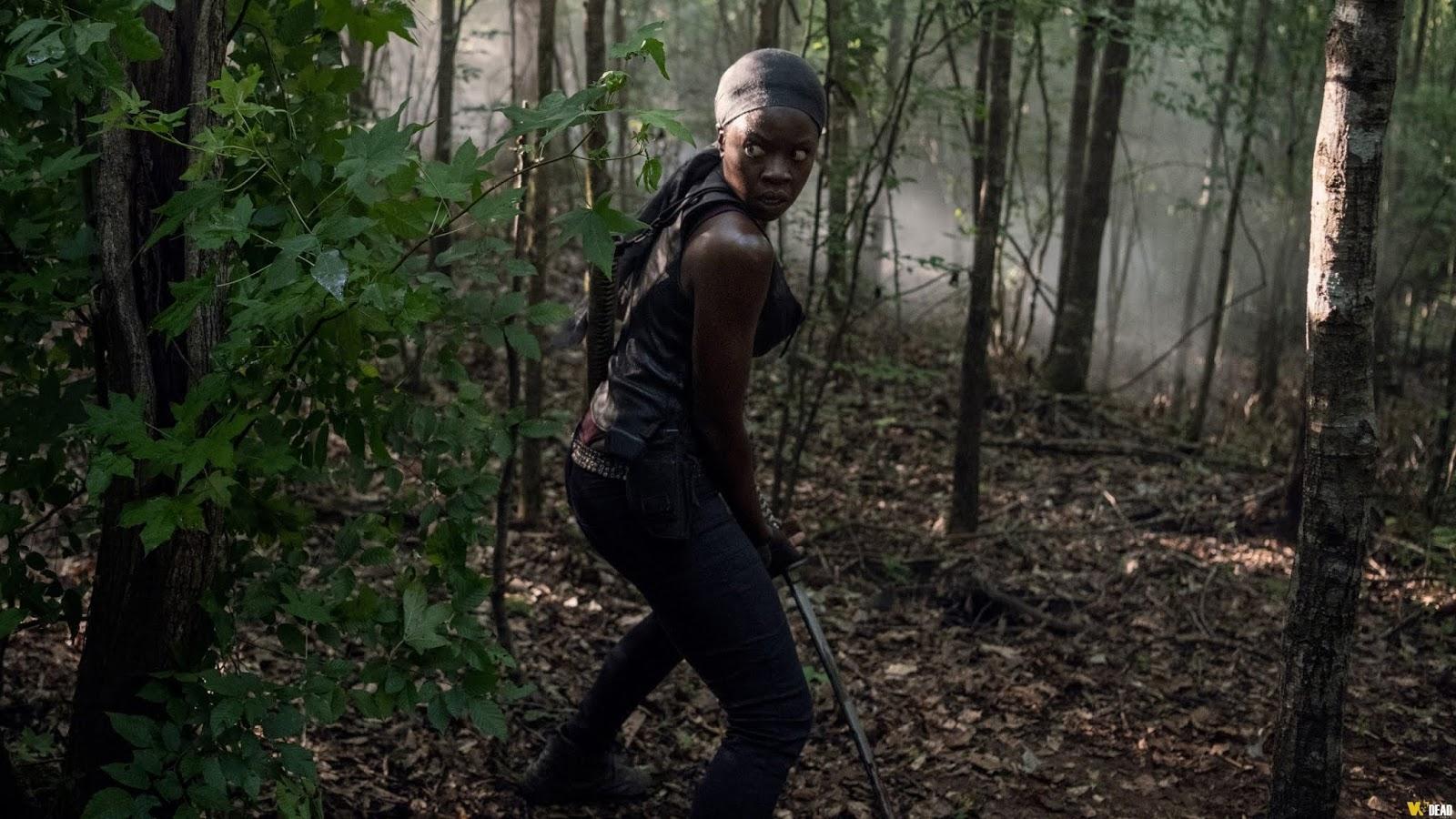 Michonne como salvadora en The Walking Dead