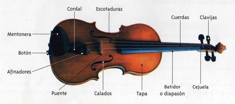 Aprender Violin Facilmente: Partes De Un Violin Y De Un Arco
