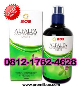 Harga Alfalfa herbal bee produk bos