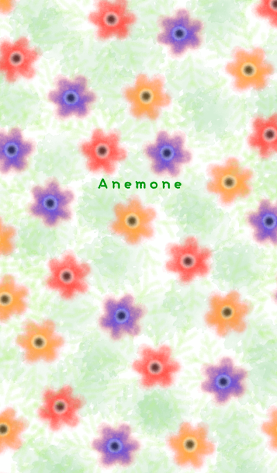 Anemone's blooming field