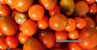 ricette confetture erbe essiccate pomodori ed orto nel giardino della fattoria didattica dell ortica a Savigno Valsamoggia Bologna in Appennino vicino Zocca