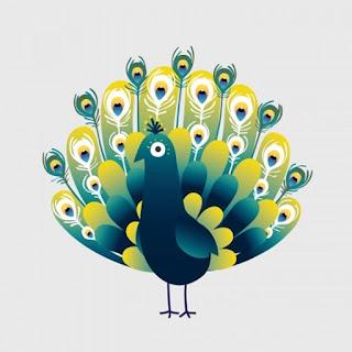 Injustamente, dão ao pavão a reputação de ser uma ave vaidosa  e exibida.