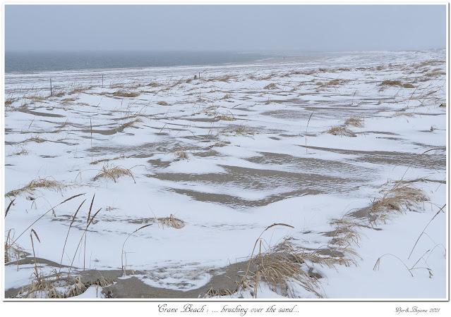 Crane Beach: ... brushing over the sand...