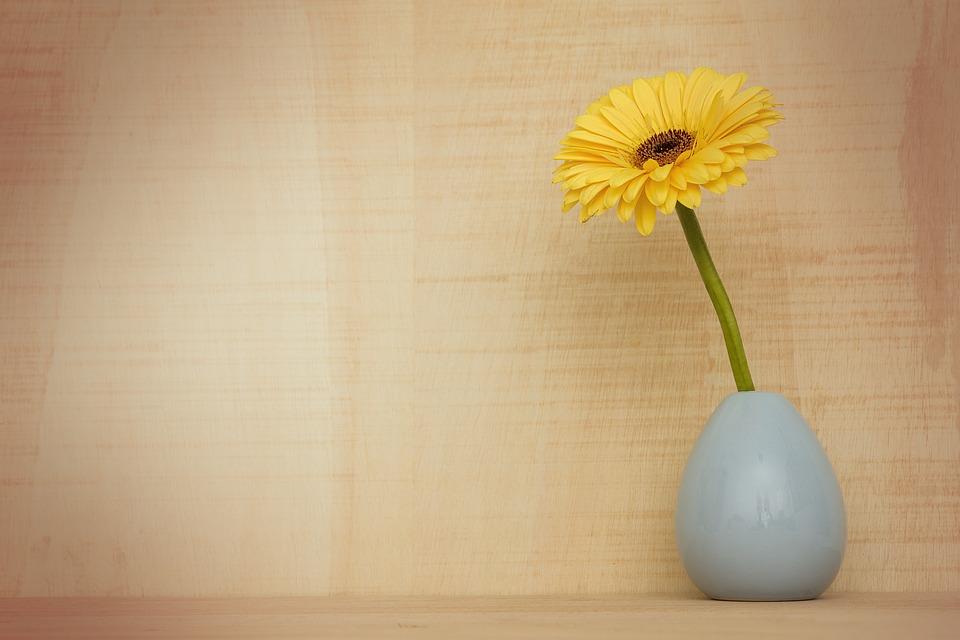 Visita il catalogo online kikaun store per trovare i vasi moderni e di design formati kartell, ivv, alessi. Edilizia In Un Click Vasi D Arredo Per Interni Stili E Abbinamenti