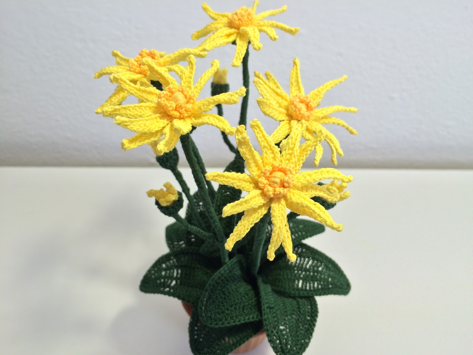 Il blog di sam how to crochet a arnica for Il blog di sam piante grasse