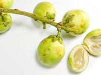 Manfaat Buah Duku untuk Tubuh dan Kandungan Nutrisinya