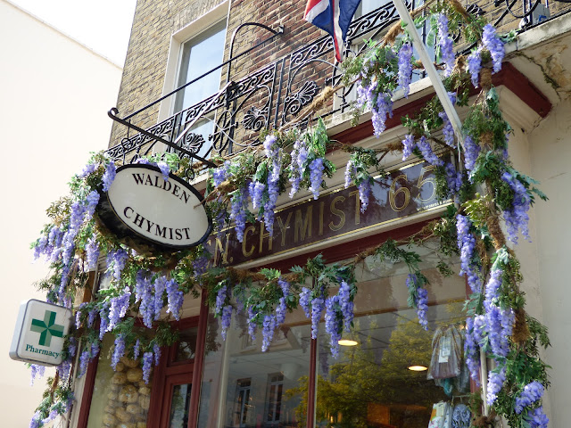Wysteria histeria on a pharmacy in London, for free flower festival Belgravia in Bloom 2018