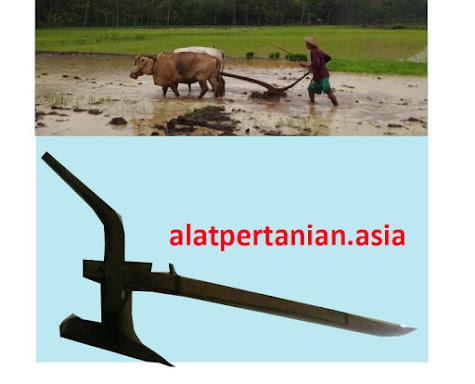 alat pertanian tradisional membajak sawa
