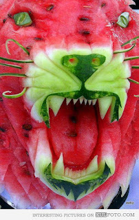 A carving of a big cat's snarling face carved from a watermelon.