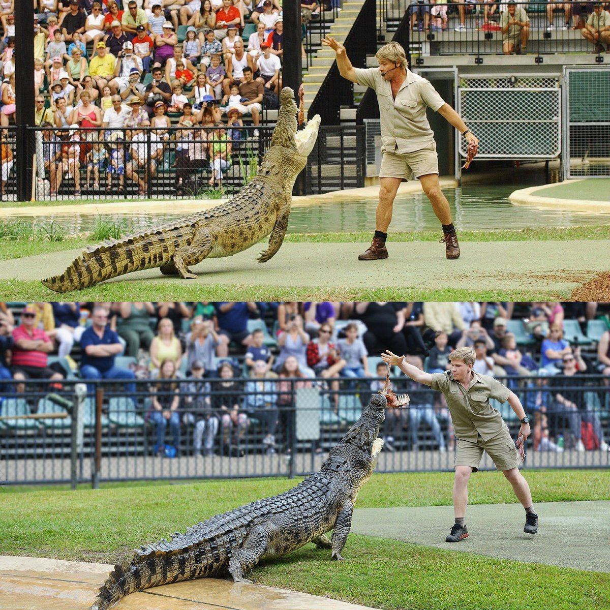 Robert Irwin reproduces photo of his dad feeding same crocodile 15-years ago
