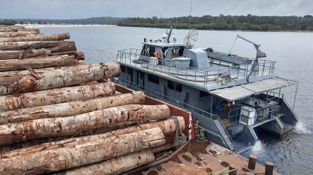 Forças Armadas apreendem novo comboio com toras de madeira no Pará