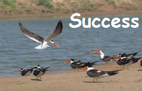 http://anilsahu.blogspot.in/2015/03/what-you-deserve-and-achieve-safalta-success-quotes-in-hindi.html