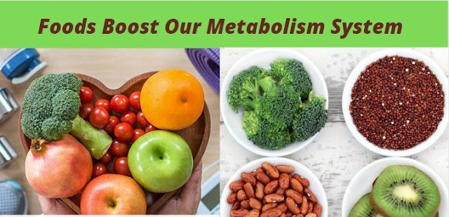 Best 5 Foods Which Boost Your Metabolism Fast