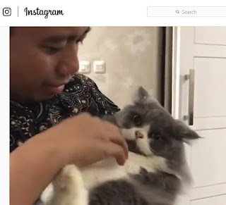 Instagram Pak Topo