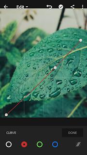 cara mengubah warna daun di lightroom android