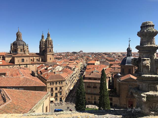 Vista desde lo alto de la Catedral Nueva