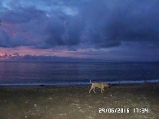 warna-senja-di depan-pantai.jpg
