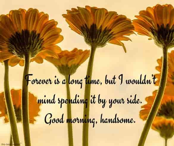 lovely love message with sunflowers