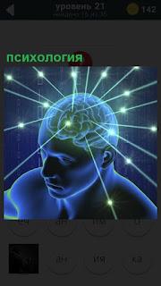 Мозг человека светится и из него расходятся в разные стороны лучи психологии