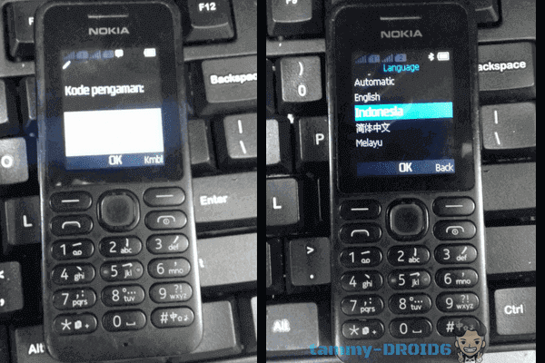 Firmware BIN Nokia 130 RM-1035 Bahasa Indonesia Tested