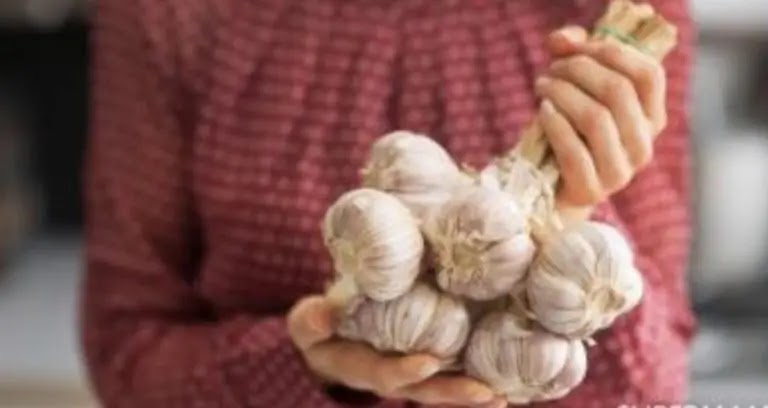 The best way to save garlic for very long periods