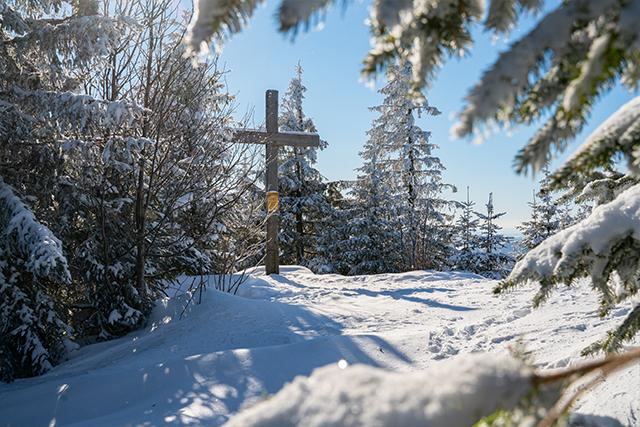 Winterwandern Mauth-Finsterau  Reschbachklause – Siebensteinkopf  Nationalpark Bayerischer Wald 01