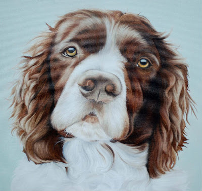 Pet Portrait Sprocker Oil on Canvas