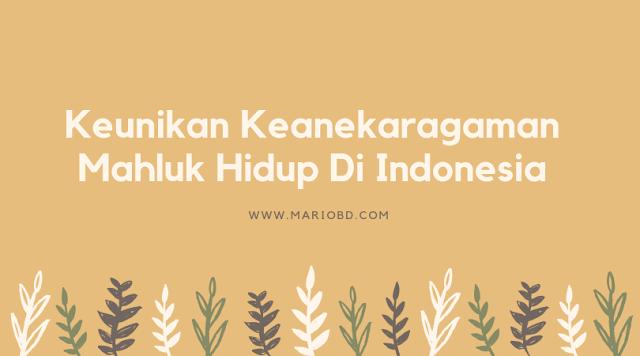 Keunikan Keanekaragaman Mahluk Hidup Di Indonesia - Mario Bd