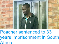 http://sciencythoughts.blogspot.com/2018/11/poacher-sentenced-to-33-years.html