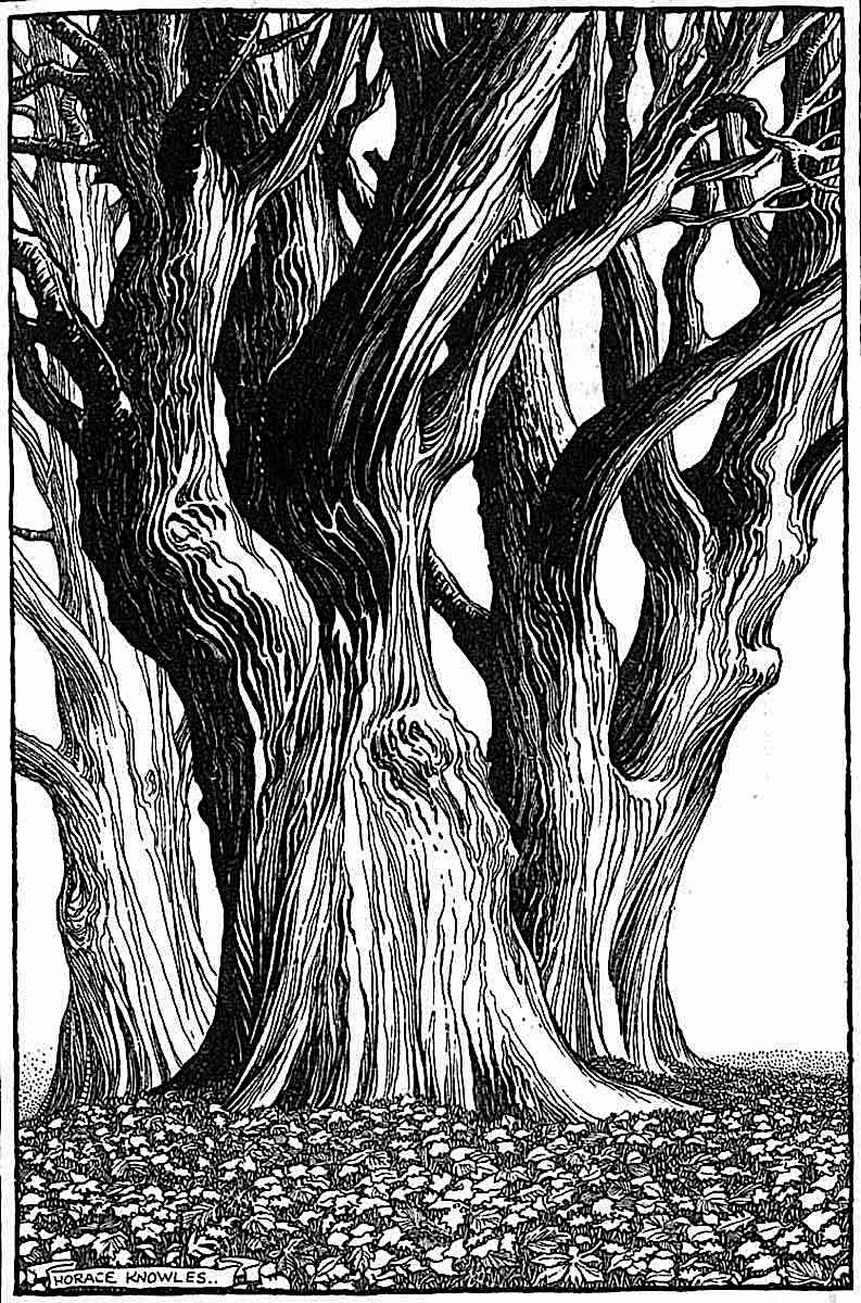 Horace Knowles, three trees