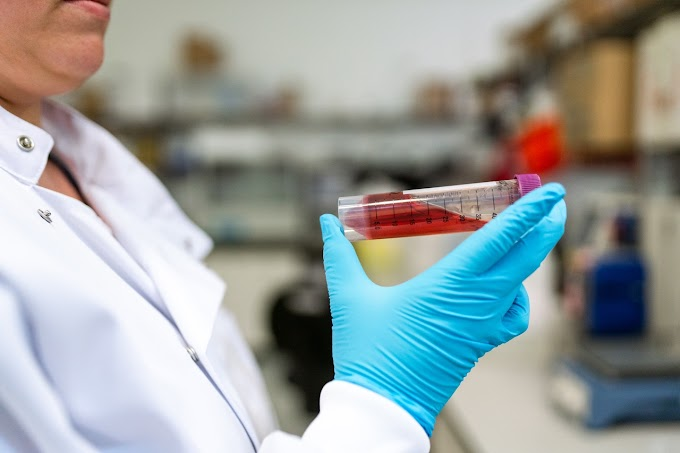 Everything About Human Blood You Should Know