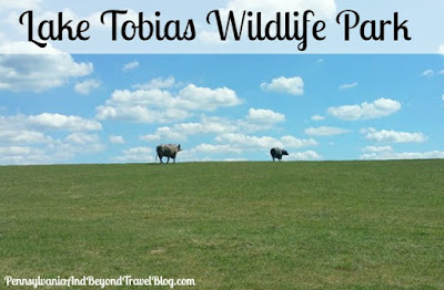 Lake Tobias Wildlife Park in Halifax Pennsylvania