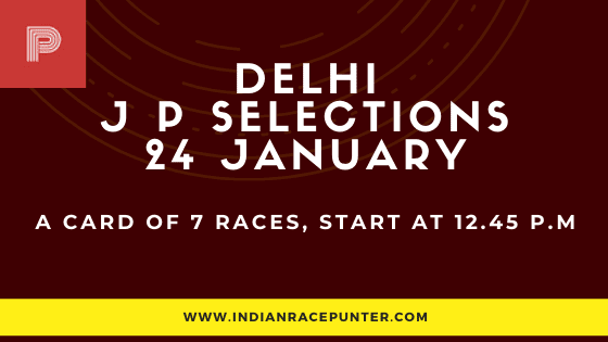 Delhi Jackpot Selections 24 January, Jackpot Selections by indianracepunter,