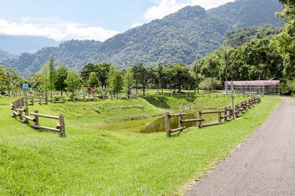 旺萊山愛情大草原浪漫裝置藝術和花燈好好拍,親子踏青休閒好去處