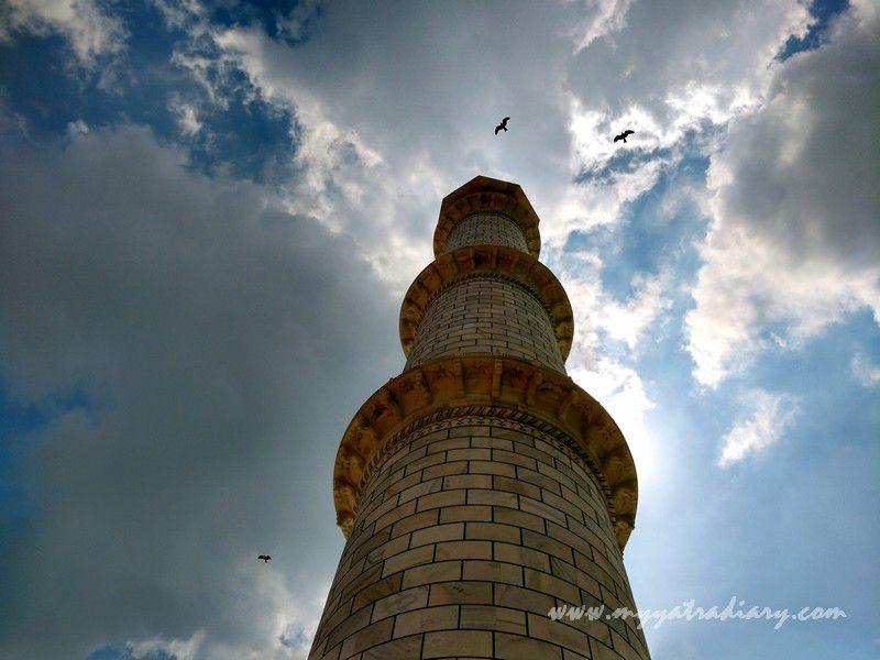 Birds flying high and free at the Taj Mahal, Agra