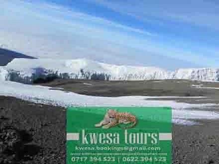 Significant Reasons to go on Safari Tanzania Kilimanjaro