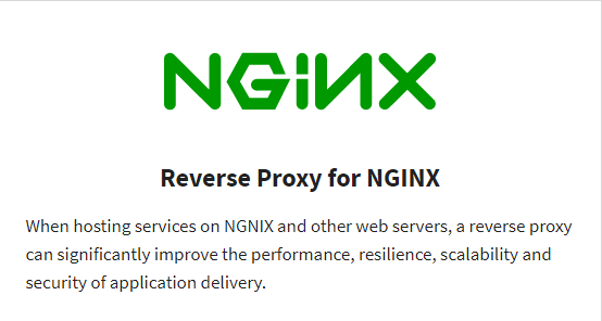Read More Reverse Proxy for NGINX