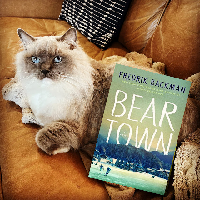 cat on a couch with a book titled Beartown