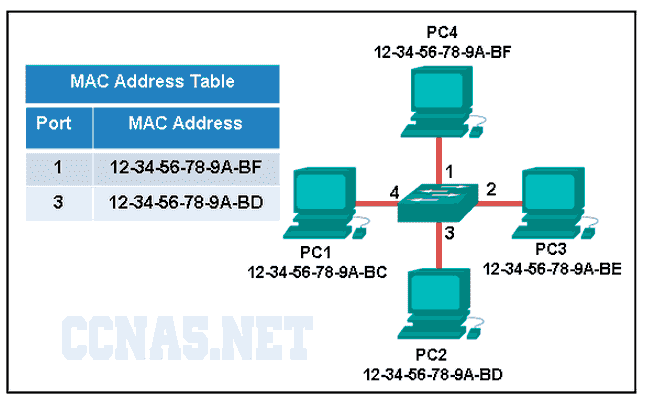 CCNA 1 v6.0 ITN Chapter 5 Exam Answers q9