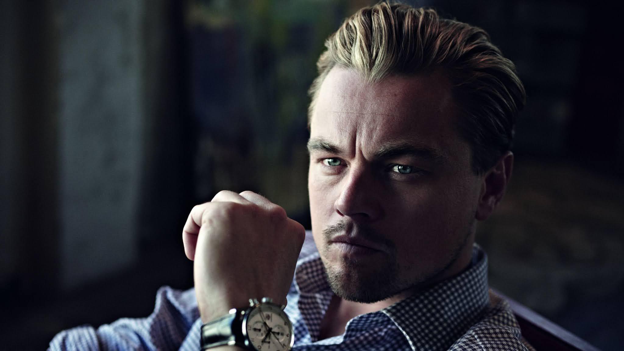 Leonardo Decaprio Handsome