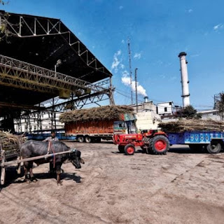 order-to-pay-majhaulia-sugar-industries