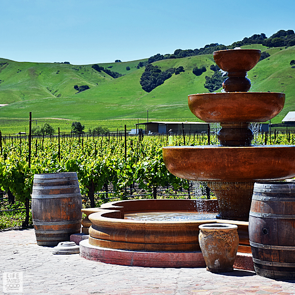 Wine Country Tours California From San Francisco